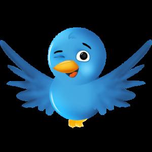 Twitter.com/zintuig